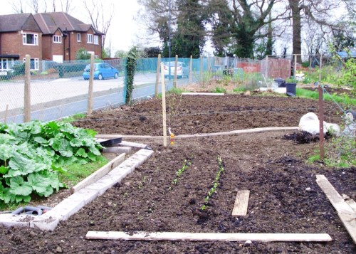 Allotment 001a