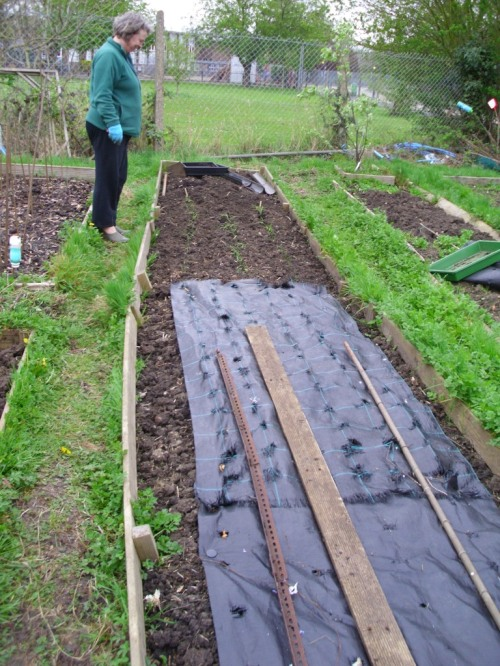 Allotment 002a