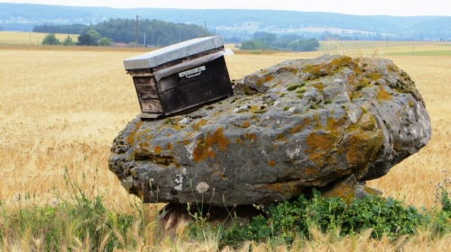 This rather modestly sized dolmen is known as Gargantua's Table.  That is indeed a beehive on top of it.  There was an apiary nearby, and we guessed that this hive was placed to catch unexpected swarms.