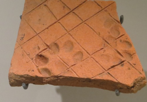 "A tile decorated with ""paw prints""."