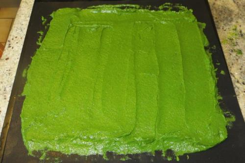 This vibrant green mixture is spinach and courgette.